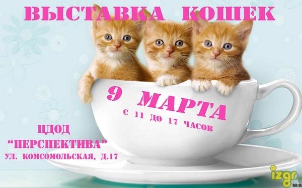 http://izgr.ru/files/2014/02/17/05/1_afisha_1392590788.jpg