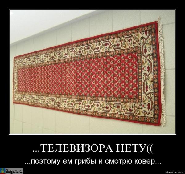 Про ковры прикольные картинки